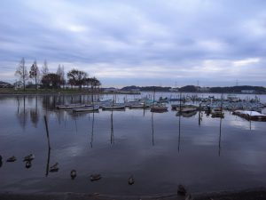 手賀沼でバス釣り、おかっぱりの旅日記。冬はDEEPで決まり! | ライフ雑学