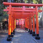 茨城 観光マップ・一度は行きたい絶景スポット大集合!
