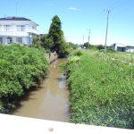茨城県の柴崎用水路でバスが入れ食いって本当なの? 行ってみました!